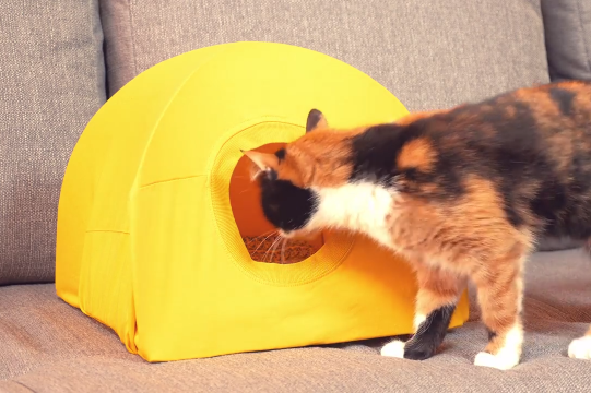 Awesome Cat Tent